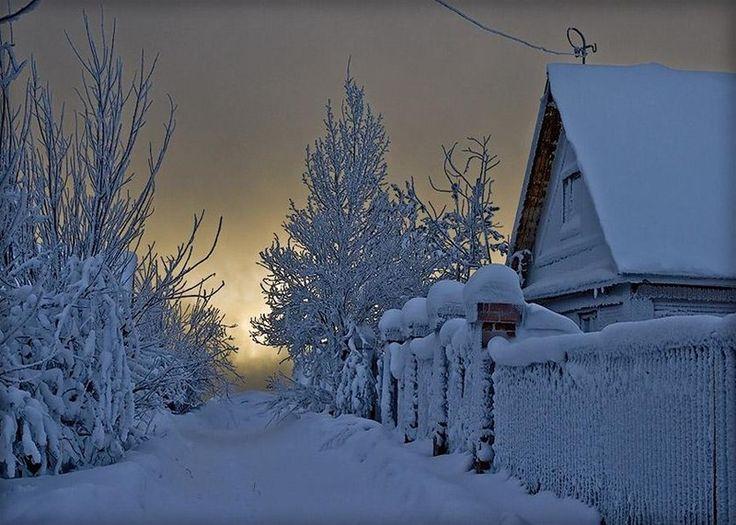 Стужа зимняя накрыла все поля и все леса