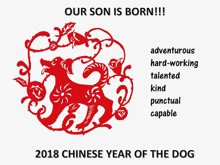 Chinese New Year Son Born Year of Dog - What characteristics have boys that are born in the year of the dog? Download this poster about Chinese zodiac animal Dog now!