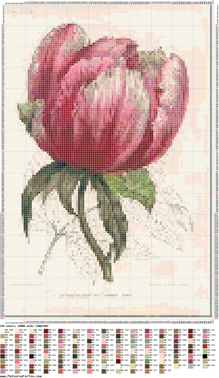 tulipan-tulipe-fleur-point de croix-cross stitch-embroidery