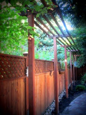 Privacy fence screening with trellis for growing climbers