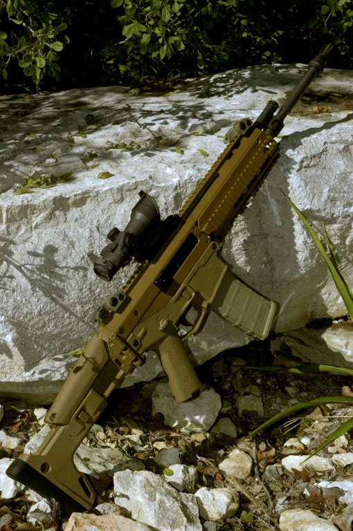 Remington (ACR) Adaptive Combat Rifle (5.56mm)