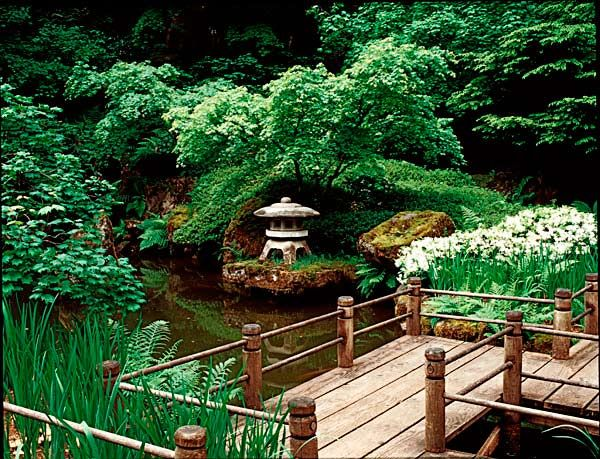 Garden Design Oregon 85 best japanese garden pond images on pinterest | japanese