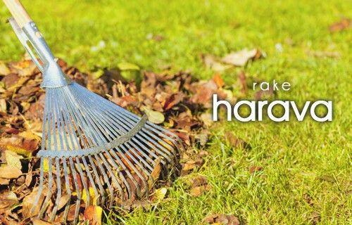 harava ~ rake