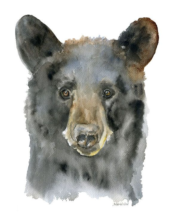 Black Bear watercolor giclée reproduction. Portrait/vertical orientation. Printed on fine art paper using archival pigment inks. This quality printing allows over 100 years of vivid color in a typical