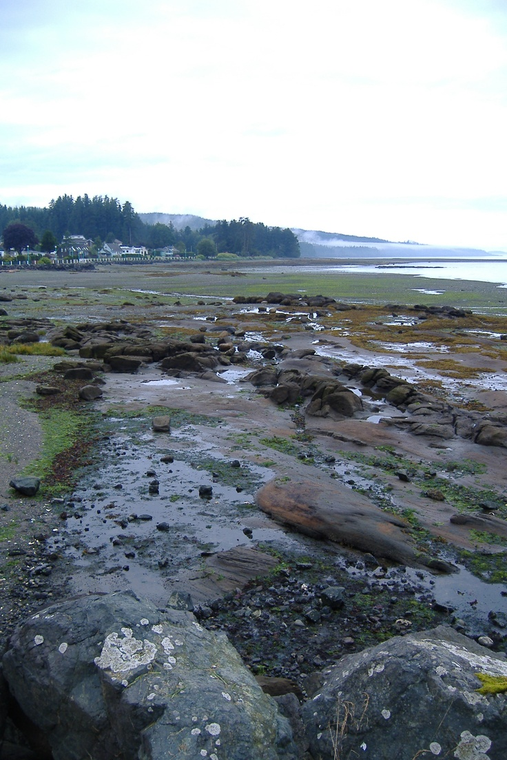 Port Hardy  Vancouver Island, BC