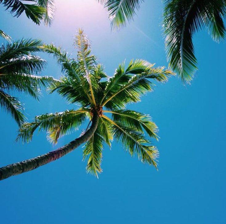 (6) Beach Vibes ☼ (@BeachPlaces)   Twitter
