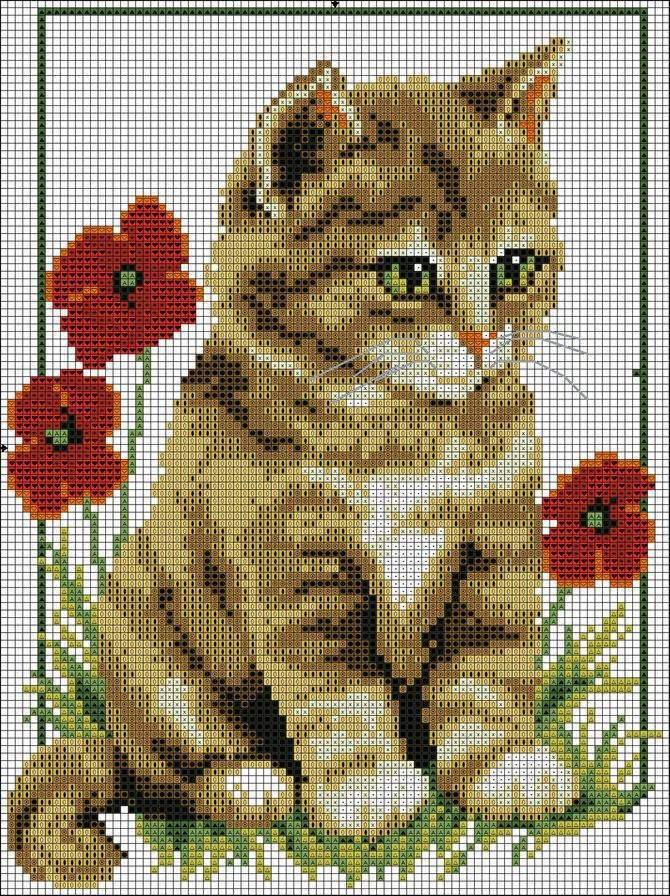 chat + fleur
