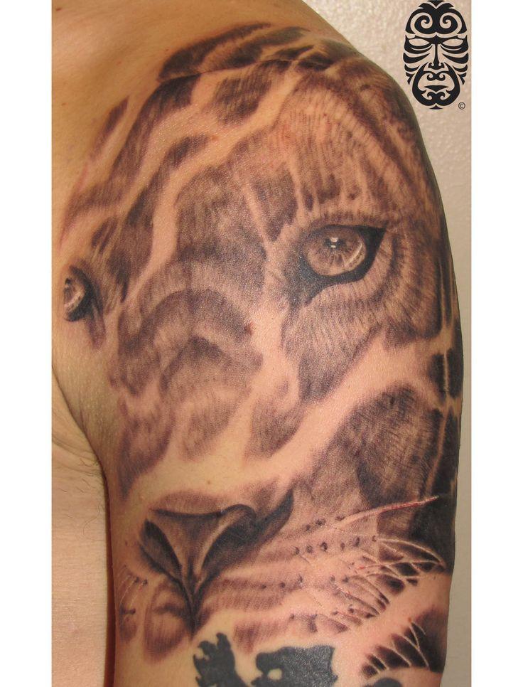 Lioness Tattoos: Lion Lioness Tattoo