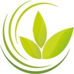Die Anwendung der Schüssler Salze als Präventivmedizin