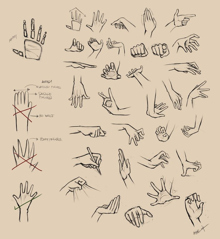 Hands Reference I by =Ninjatic on deviantART via PinCG.com