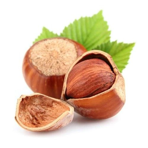 Hazelnuts can be grown from seeds, although they do need to be planted near another hazelnut tree in order to germinate. Just dry the nuts well and plant them in a rich soil. You can begin your plantings indoors and then transplant outdoors during warmer weather if you want or if you live in an area that is warm year-round, just plant them whenever you are ready. You will begin growing your own hazelnuts within just a couple of years.