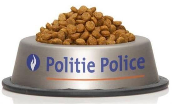 ΜΑΚΕΔΟΝΙΑ ΝΕΑ * MACEDONIA NEWS: Η βελγική αστυνομία ευχαριστεί τις γάτες του Bruss...