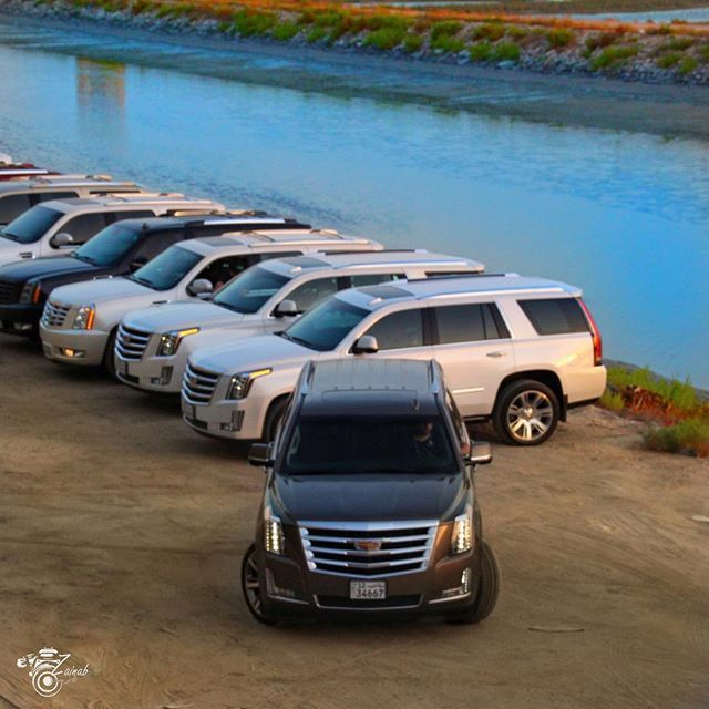 2010 Cadillac Escalade Esv Premium: 20 Best Celebrities & Their Cadillacs Images On Pinterest