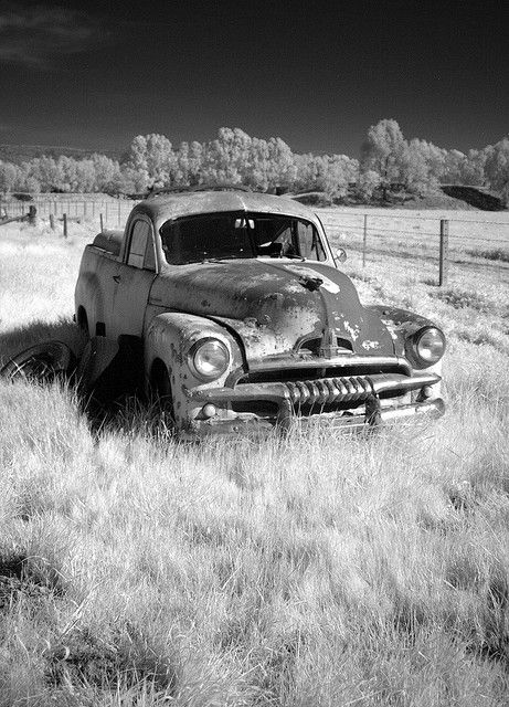 FJ Holden ute | Flickr - Photo Sharing A couple of old utes were in rusty retirement under the pepper trees on the farm.