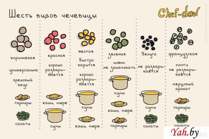 Продолжение кулинарных советов в картинках — Sol omnibus lucet