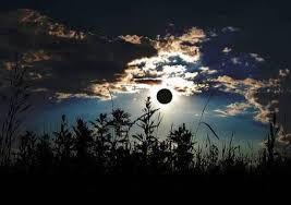 altı kız bir ay ışığı def çalıp şarkılar söylediler / beri yanda ormanlar yanardı, ciğerpareler lime