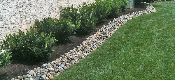 Low Maintenance Flower Beds In Front Of House Curb Appeal