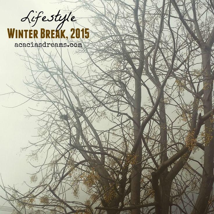 Winter Break, 2015 | acaciasdreams.com