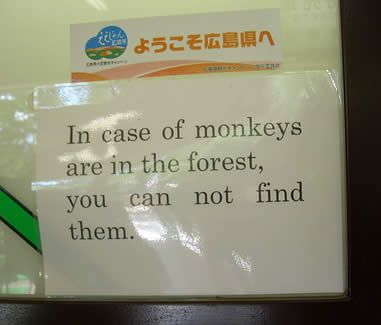 In case of monkey in the forest you can't find them - one of the funniest engrish ever