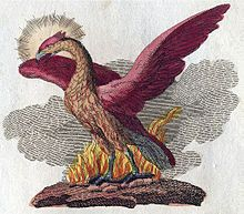 In Greek mythology, a phoenix or phenix (Ancient Greek φοίνιξ phóinīx) is a long-lived bird that is cyclically regenerated or reborn. Associated with the sun, a phoenix obtains new life by arising from the ashes of its predecessor. While the phoenix typically dies by fire in most versions of the legend, there are less popular versions of the myth in which the mythical bird dies and simply decomposes before being born again.