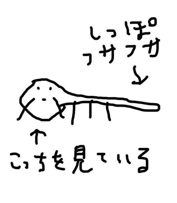 俳優で映画監督の田辺誠一さんが描くタヌキをご覧下さい:ハムスター速報
