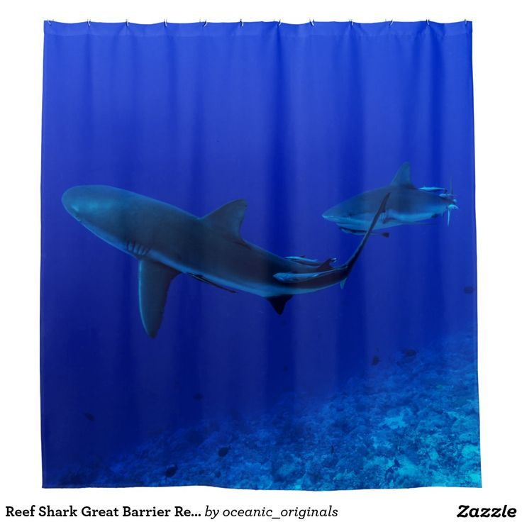 This awesome shower curtain features a pair of reef sharks in the clear blue waters of the Coral Sea. The photo was taken on Osprey Reef about 200km off the coast of Australia.