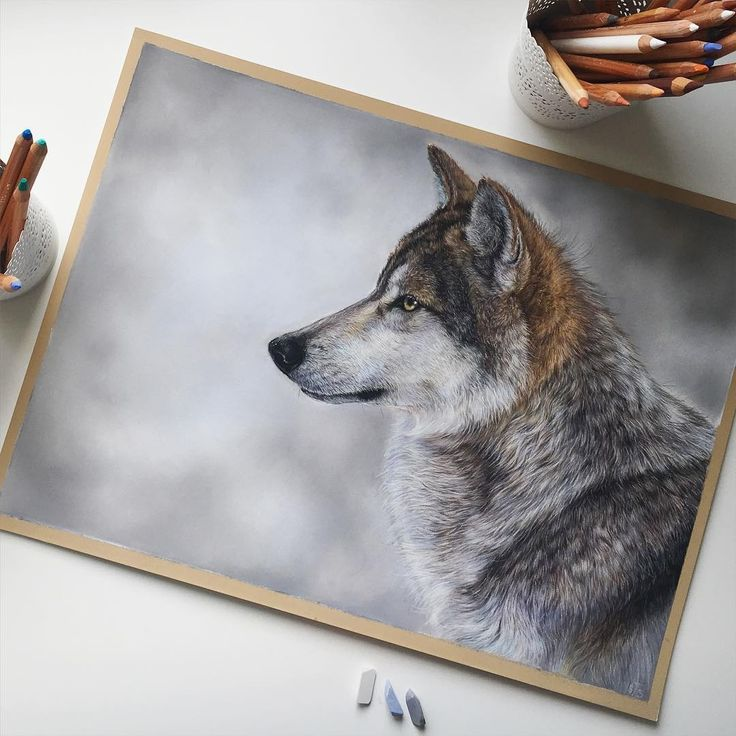 Wolf. Domestic and Wild Animal Drawings. By Tatjana Bril.