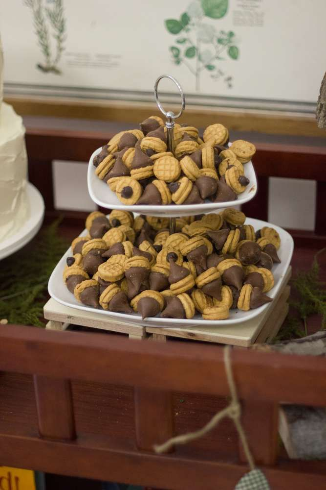 Yummy acorns at a Woodland Baby Shower!  See more party planning ideas at CatchMyParty.com!