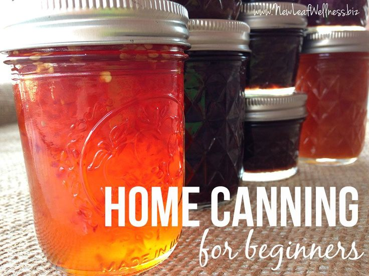 Home canning for beginners. Step-by-step instructions for water bath canning with lots of photos.