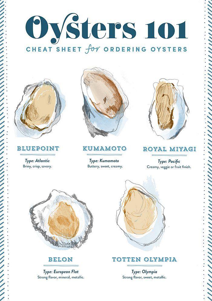 The perfect oyster cheat sheet from One King's Lane. Perfect pairing: Château de La Ragotière Sélection Vieilles Vignes Sur Lie Muscadet Sèvre et Maine 2014.