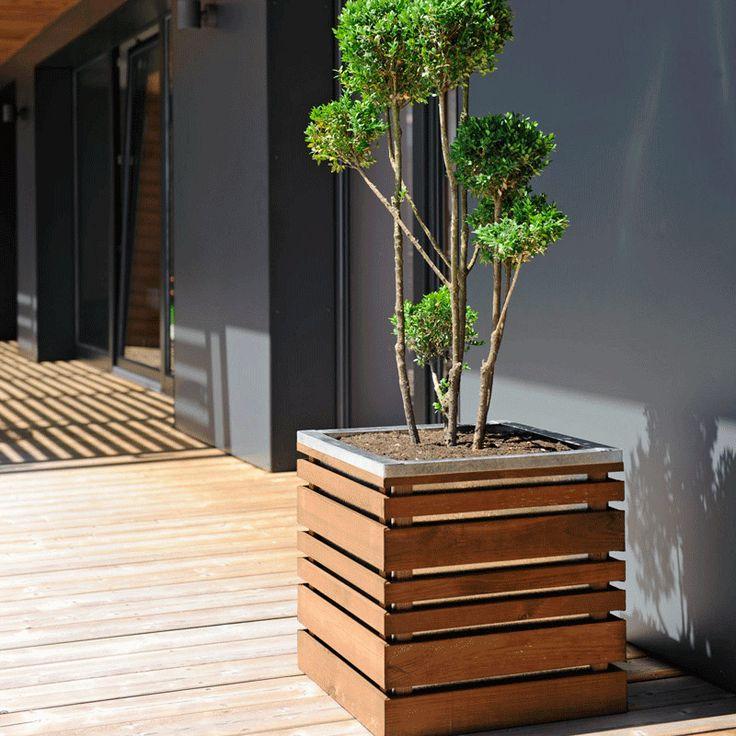 Bac à fleurs en bois carré LIGN Z 50.