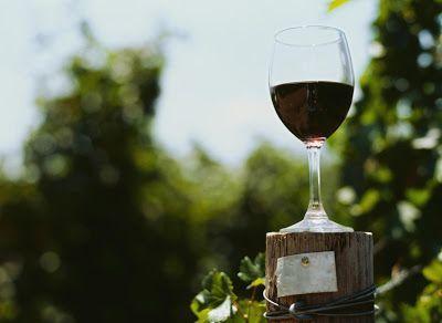 Beneficios del vino tinto El consumo moderado del vino, sobre todo del tinto, cuenta con múltiples ventajas para la salud del ser humano; ayuda a contrarrestar diversas enfermedades (especialmente las del corazón) y a mantener el cuerpo relajado, con una actitud positiva... #salud #health #life #vinotinto #vida #vida #alimentacion #nutricion #vino #bebida