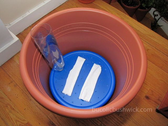 Convert a Standard Planter into a Self Watering Container.                                     THIS!!  THIS!    The container in the bottom also takes up space from soil, making the container lighter and easier to move.  Dollar store plastic containers.                                                   ....this is a MUST do this spring!!