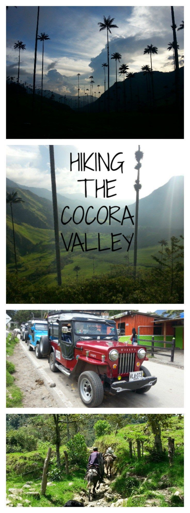 Hiking the Cocora Valley Colombia