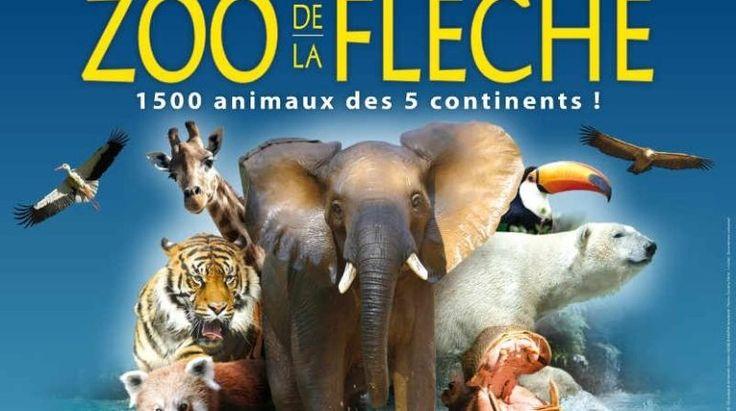 Le zoo de la Flèche (72) s'agrandit pour accueillir de nouveaux pensionnaires