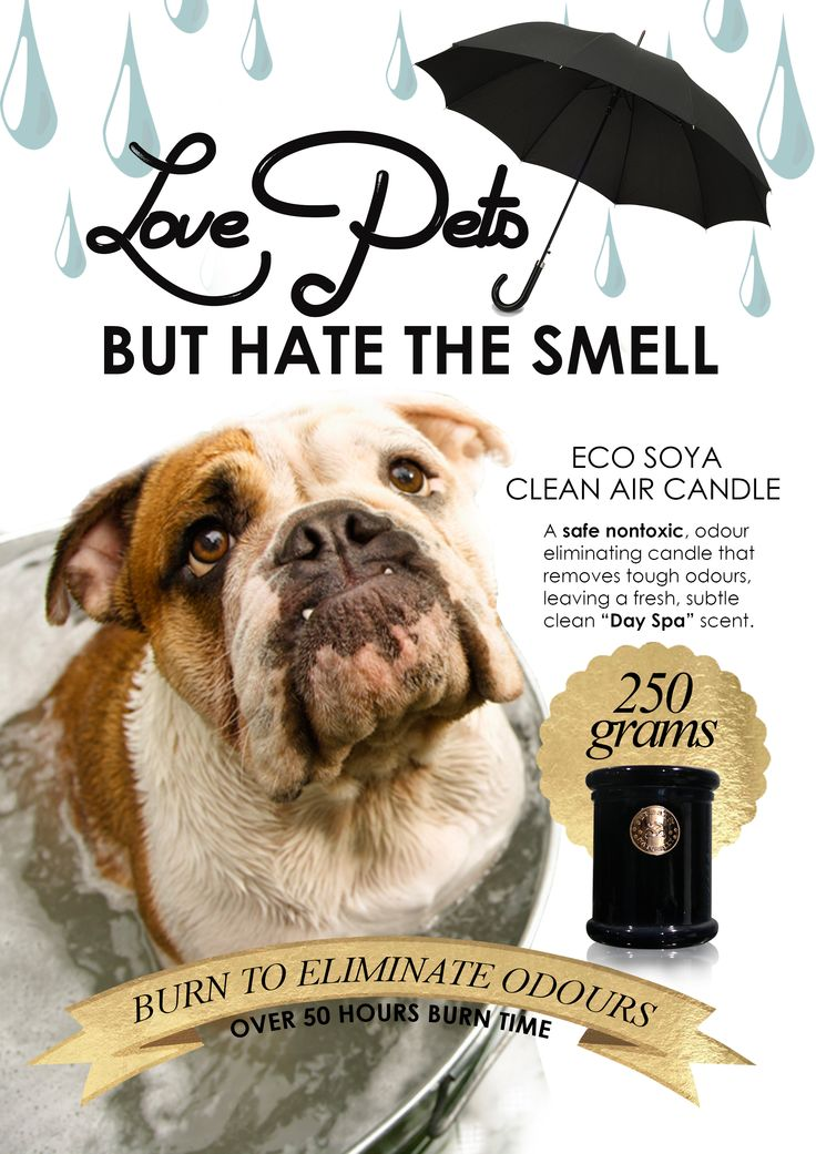 Surmanti Eco Soya Clean Air Candle - For Pets