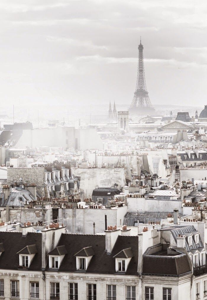 Paris in the Fog (the cinderella project: because every girl deserves a happily…