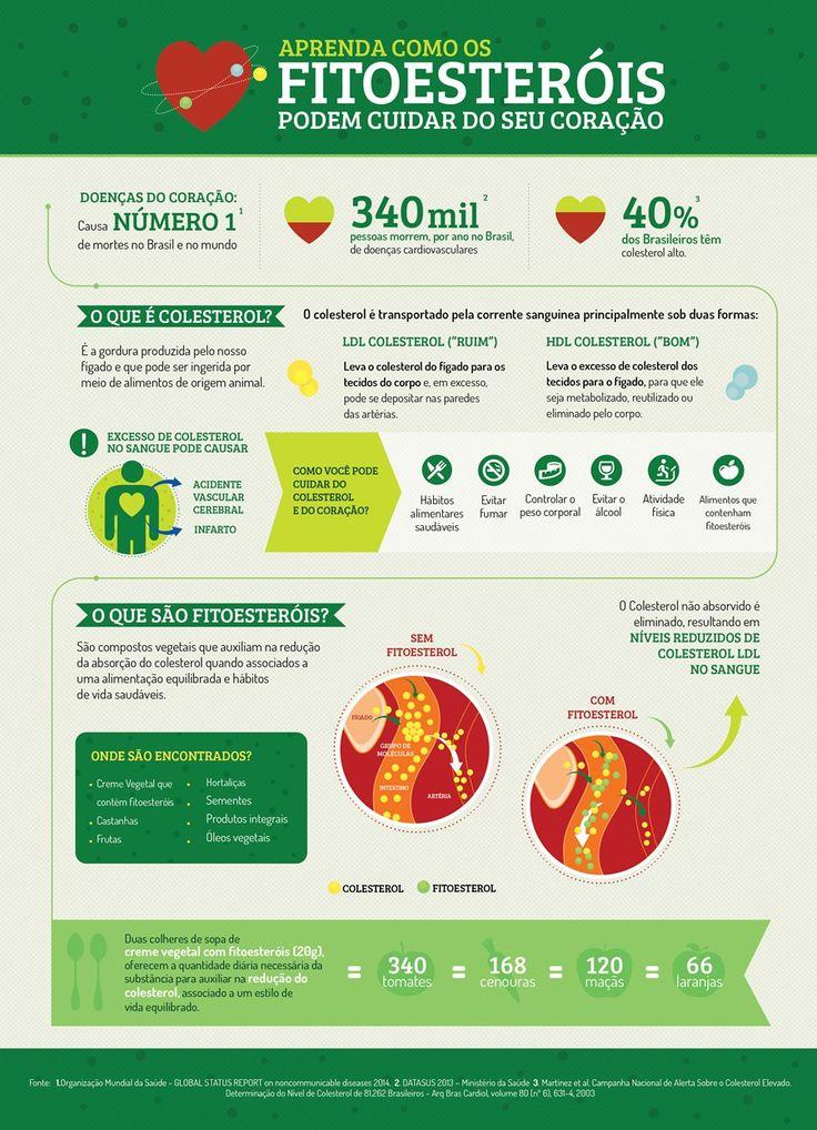 """Ingerir fitoesteróis na dose certa é importante para reduzir o """"colesterol ruim"""""""