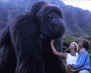 Mighty Joe Young! I love this movie!!! I grew watching this movie every day!