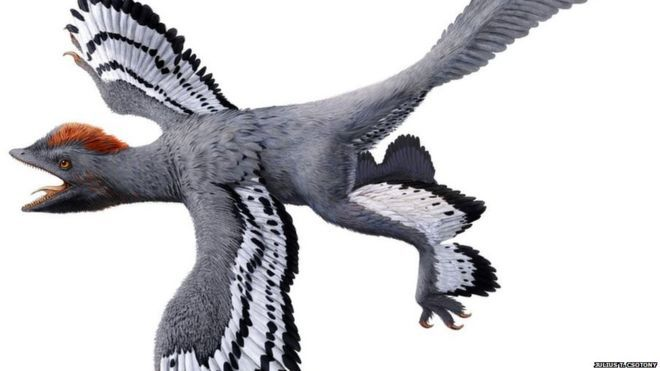 'Best ever' view of what a dinosaur really looked like - Using new tech to reveal more about the past
