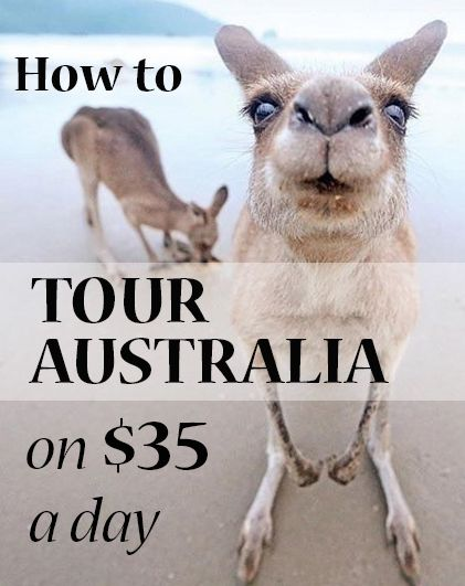 How to tour Australia on $35 a day. Reliable and cheap campervan hire  can get you and your family or friends around Australia on less than you might think. Fall asleep to the sound of the ocean. Meet the friendly wildlife. Create memories of a lifetime. Our road trip planner will help you create the journey of a lifetime.