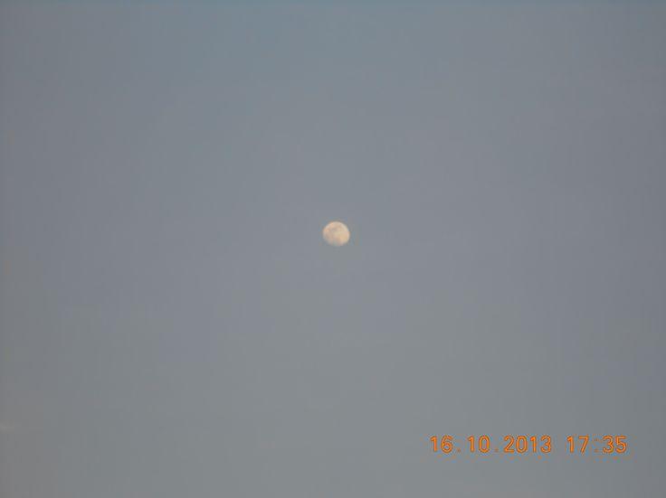 bulan di sore harii