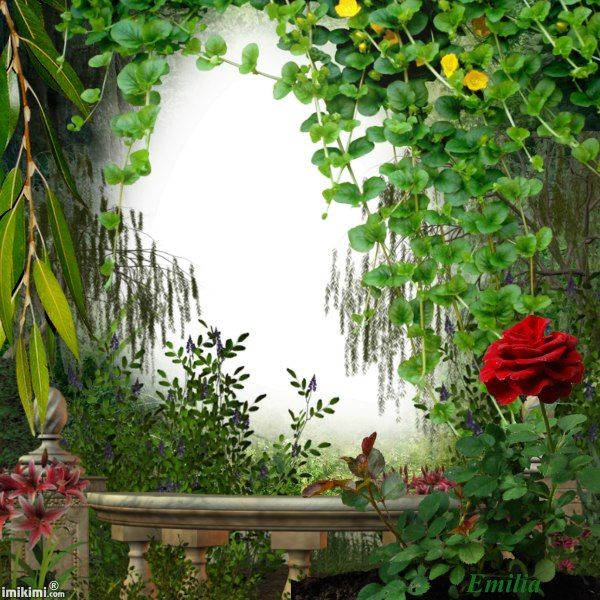 17 Best Images About Natural Garden Picture Frame On