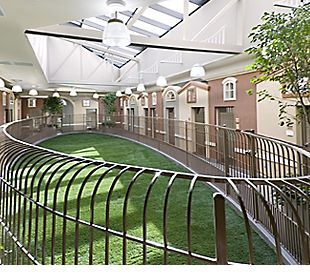 Amazing Dog Kennels For Sale