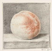 fruit-Verzameld werk van Geertruida M.P. Brouwer - Alle Rijksstudio's - Rijksstudio - Rijksmuseum