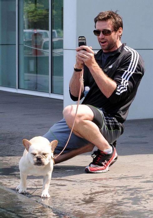 Hugh Jackman and his French Bulldog