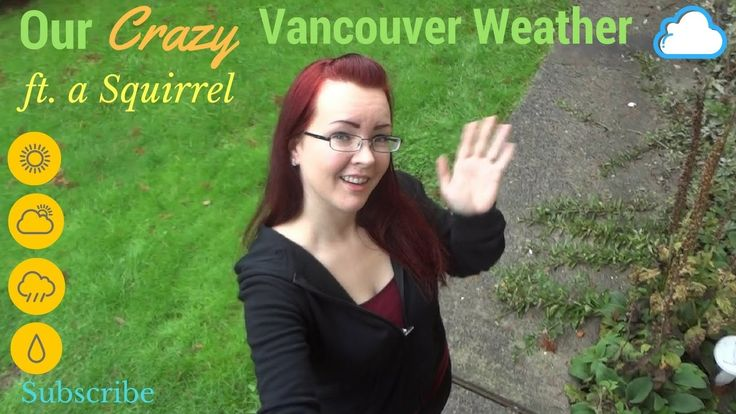 Our Vancouver Weather ft. a Squirrel :)
