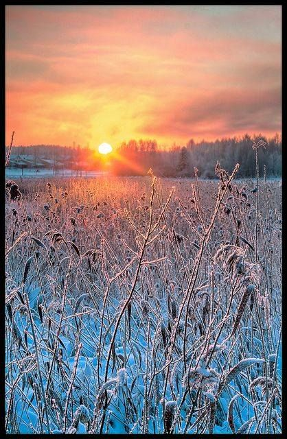 A cold Winter Sunrise