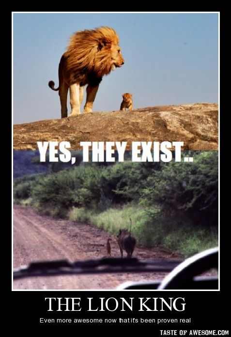 I know I've pinned the Pumbaa and Timon one, but Mufasa and Simba are adorable!!!!