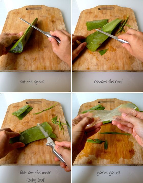 A DIY Aloe and coconut body and hair mist, but I'm pinning for the pictures on how to properly cut an aloe leaf. It's like fileting a fish!